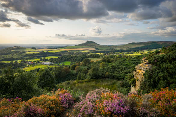 North York Moors in Summer Colours for the Royal Photographic Society