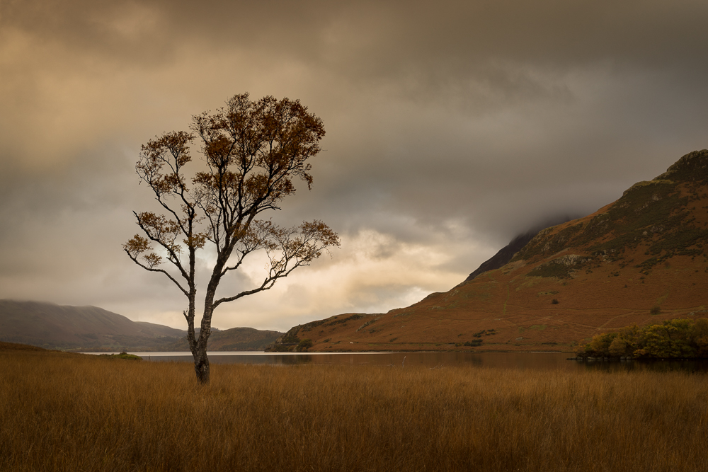 Crummock Water in autumn